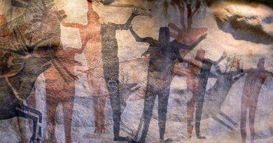 species of human ancestor
